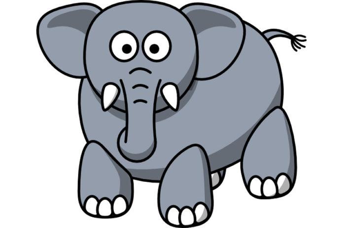 Elephant-Stew